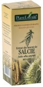 Extract Amenti de Salcie 50ml Plantextrakt