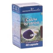 Calciu de Stridii cu Vitamina D3 40cps Remedia
