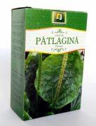 Ceai Patlagina 50g Stefmar