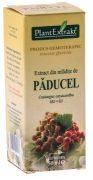 Extract Mladite de Paducel 50ml Plantextrakt