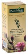 Extract Muguri de Mesteacan 50ml Plantextrakt