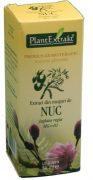 Extract Muguri de Nuc 50ml Plantextrakt