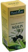 Extract Mladite de Maslin 50ml Plantextrakt