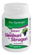 Extract samburi de struguri 720mg 30cps Bio-Synergie