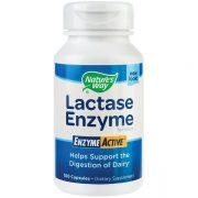 Lactase Enzyme Active 30 Cps Secom