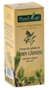 Extract Mladite de Lemn Cainesc 50ml Plantextrakt