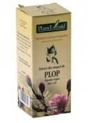 Extract Muguri de Plop 50ml Plantextrakt