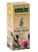 Extract Muguri de Porumbar 50ml Plantextrakt