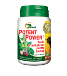 Potent Power 50tb Star International