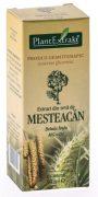 Extract Seva de Mesteacan 50ml Plantextrakt