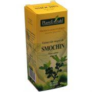 Extract Muguri de Smochin EH 50ml PlantExtrakt
