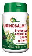 Urinosalm 100cps Ayurmed